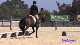 237D Connie Arthur on Desert Pearl Novice Horse Dressage Woodside August 2014