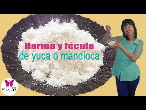 tapioca es harina de yuca