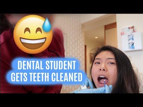 GOT MY TEETH CLEANED BY WHO??? // LauraSmiles Vlog #8