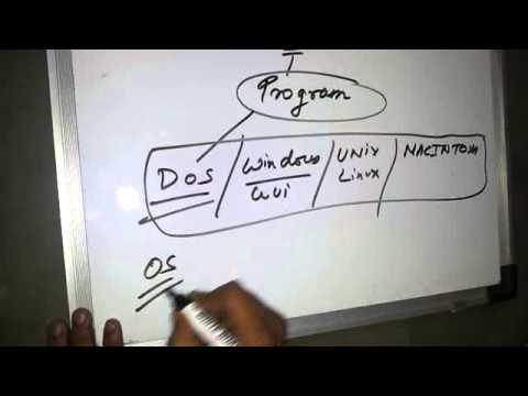 an overview of polymorphism programming language feature What is polymorphism it is the term for programming that automatically detects the right response to different actions learn how polymorphism can streamline your code by watching this online video.