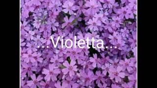 Как  менялись герои сериала Violetta... 2012 - 2016г.