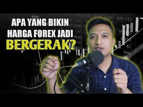 penyebab-harga-forex-bergerak,-pemahaman-leverage,-margin,-&-lot