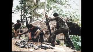 El ejercito de Nicaragua