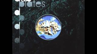 Salmonella Dub – Inside The Dub Plates  (2001)  Full Album