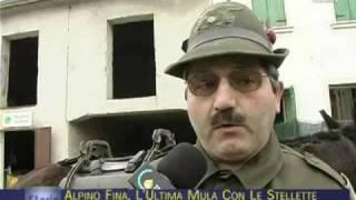23-04-10 STORIE -  Alpino Fina: l