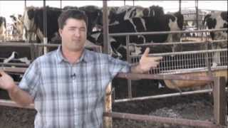 2012 California Leopold Conservation Award Recipient -- Dino Giacomazzi, Hanford, CA dairy farmer