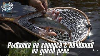 Вертушка лучшая приманка? Рыбалка на хариуса в средней полосе России. Рыбий жЫр 11 выпуск