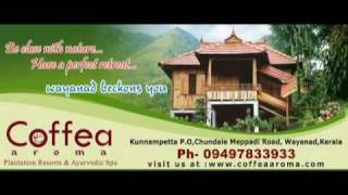 Coffea Aroma Resort -  Wayanad -  Kerala -  India