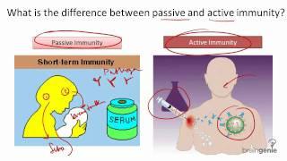 8.11.3 Types of Immunity --Passive v Active