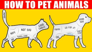 How to Pet Dogs, Cats and Animals