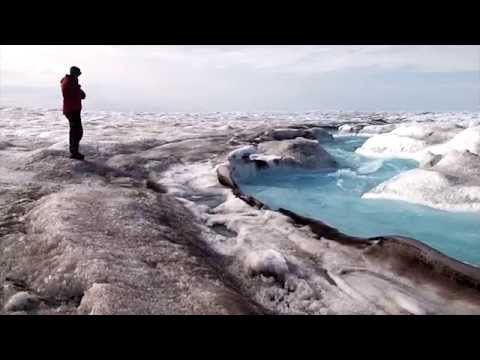Life on Earth's Cold Shoulder - Glacier ecosystems and climate change