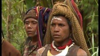 Papua Neuguinea - Land der Überraschungen