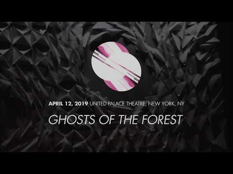 "Ghosts of the Forest - 04/12/2019 - ""Ghosts of the Forest"""