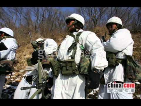 Second Korean War? North and South Korea military comparison!