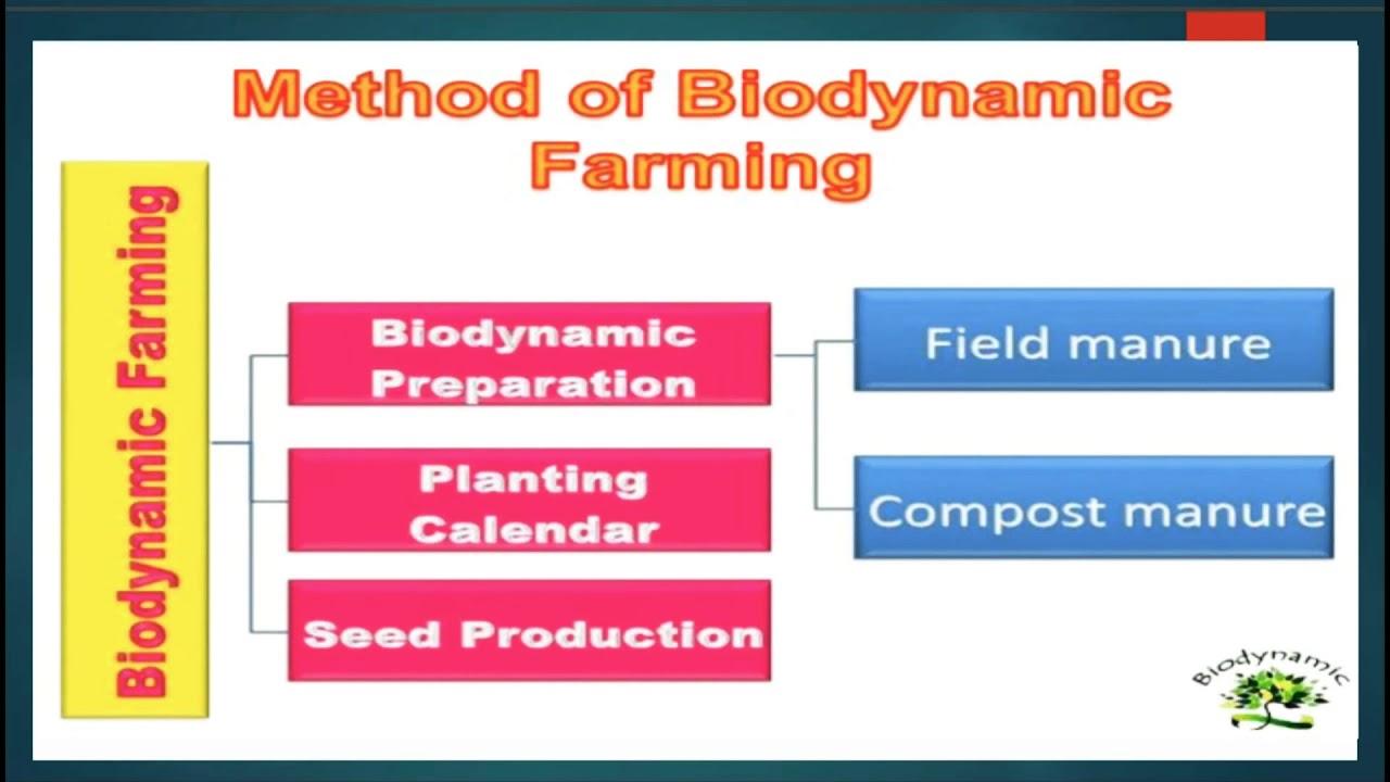 Biodynamic preprations    Herbal drug technology    b Pharmacy 6th semester 3rd year    in hindi 🔥 #Herbalmedicine
