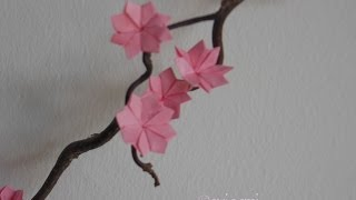 Origami-Kirschblüte - Faltanleitung