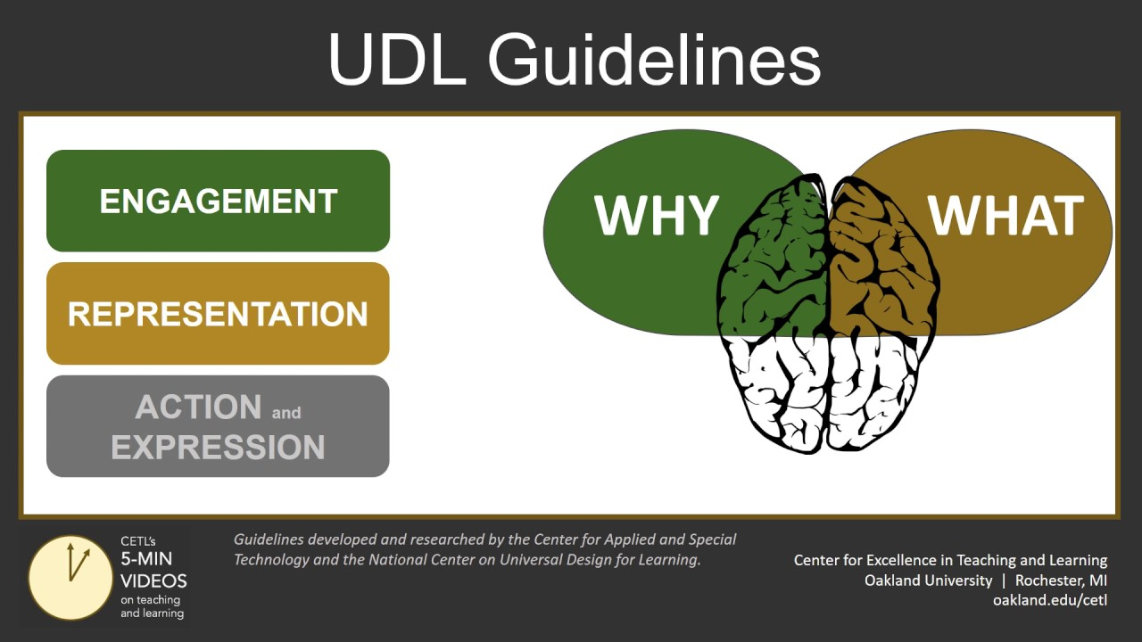 Universal Design For Learning Part 2 Udl Guidelines Youtube