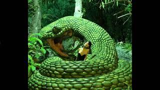 Jungle Girl Vore 6