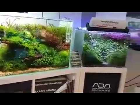 Aquascaping Home Studio aquarium tank collection