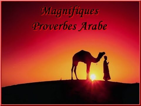 des phrases en francais traduit en arabe pdf