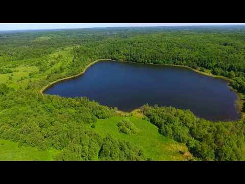 Купить участок со своим берегом - Свой берег озера Алексеевское (канал Лучшие Земли)