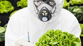 Obama Gives Monsanto Get Out of Jail Free Card