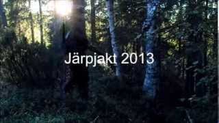 Järpjakt 2013 - Hazel Grouse hunting in Sweden