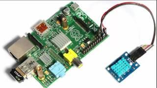 Raspberry Pi show real time sensor data in a graph Python