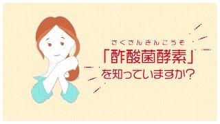 「酢酸菌酵素に注目!」篇