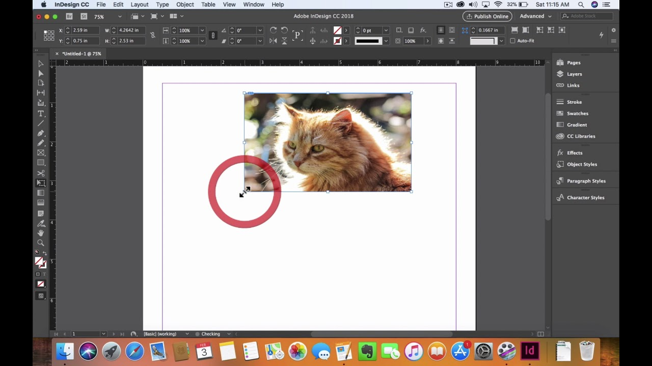 How to use the Free Transformation Tool in InDesign CC