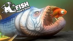 Feed and Grow Fish Gameplay German - Urzeit Fisch Xiphactinus