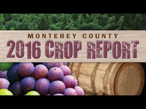 Monterey County Wineries: 2016 Crop Report