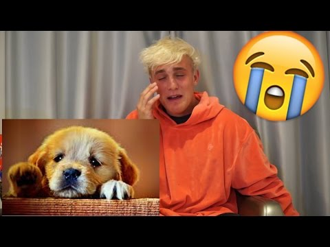 Thumbnail: TRY NOT TO CRY CHALLENGE