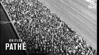 Washington Horse Race:
