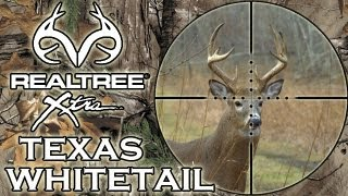 Texan Whitetail Deer Hunt