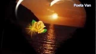 Roberto Carlos - A Mulher que eu Amo