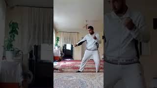 Уроки кунг-фу от Руслана Ли