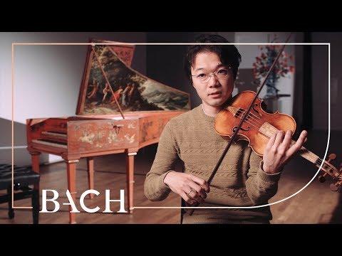 Sato on Violin Concerto in D minor BWV 1052R | Netherlands Bach Society