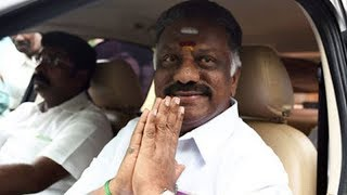 Panneerselvam may settle for deputy CM's post