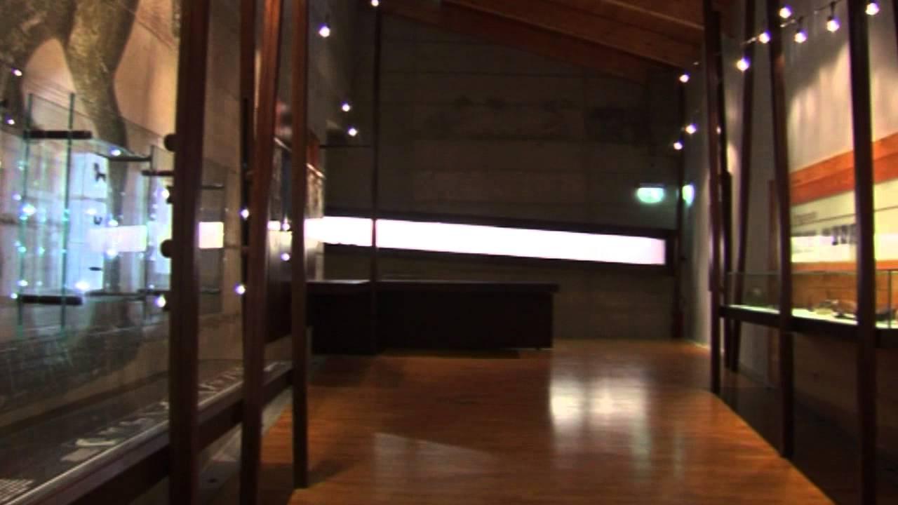 Download Museo Retico - Museum Exhibitions of Asteria Multimedia