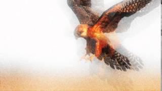 7mirror - Falcon