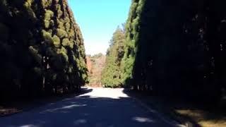 八王子長房町武蔵陵墓地。大正天皇陵の多摩陵までの風景。 2018.1.2.