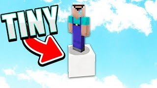 The SMALLEST Minecraft World!