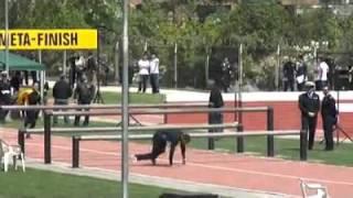 LUIS DANIEL competencia de obstaculos en chile