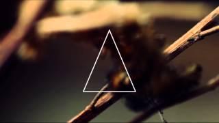 Pedro Cazanova Ft. MaxC - OnFire Lyrics Video