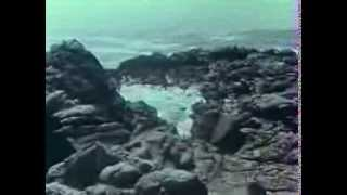 Repeat youtube video Voyage to the Planet of Prehistoric Women (1967)