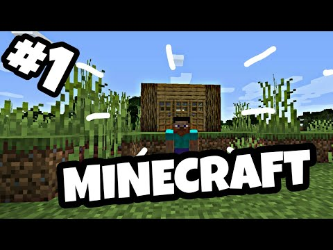 BUILDING A HOUSE (Minecraft #1)