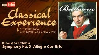 Ludwing Van Beethoven : Symphony No. 5 : Allegro Con Brio - ClassicalExperience