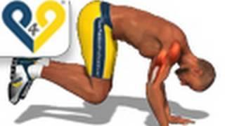 Training für Brust, Trizeps und Schultern