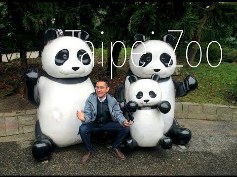 Taipei Zoo Animals
